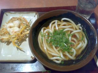 20071209593udon